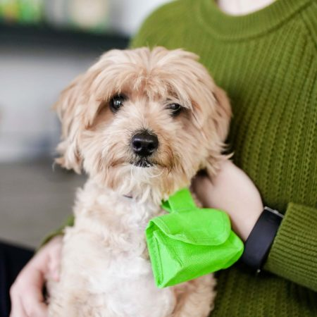 Sustainable Dog Poop Bags