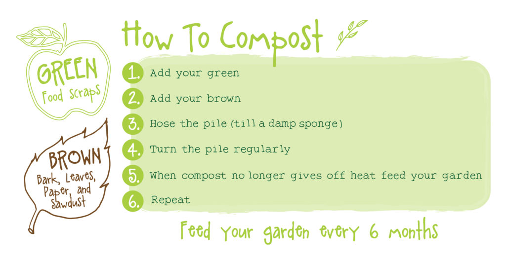 The 6 Easy Steps to a healthy compost